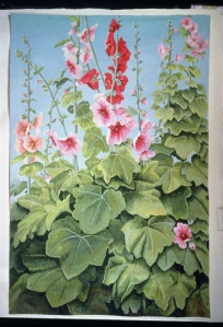 Fassett's immense needlepoint tapestry featuring hollyhocks. Photo: Kaffe Fassett Studio Archive. Image Courtesy of Abrams/STC Craft/Melanie Falick Books.
