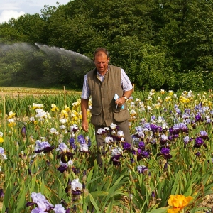 Hybridizer Richard Cayeux in his fields of iris. Photo courtesy of Cayeux Iris.